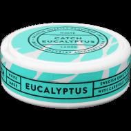 Catch Eucalyptus Large White Portion Snus